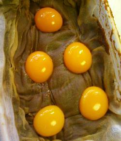 初卵の黄身の味噌漬け14