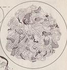 クルマエビのスパゲティ図