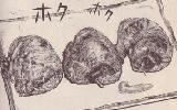 トリカワギョーザ(揚げた方)図