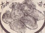 トリカワギョーザ(焼いた方)図