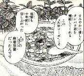 大豆肉の麻婆豆腐図