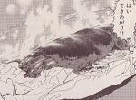 イカのゴロ焼き図