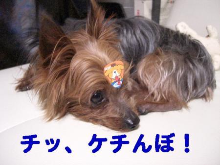 コピー ~ 2008.11.27~ 042