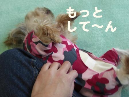 コピー ~ 2008.12.12~ 029