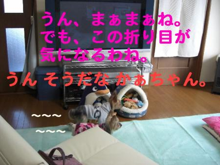 コピー ~ 2008.12.12~ 025