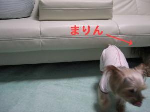 コピー ~ 2008.12.20~ 010