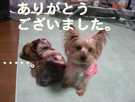 コピー ~ 2008.12.20~ 063