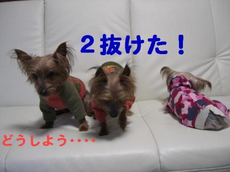 コピー ~ 2008.12.30~ 080