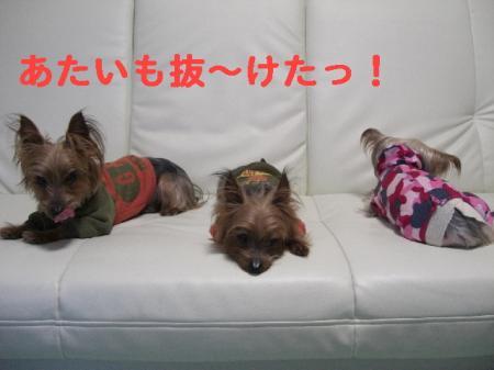 コピー ~ 2008.12.30~ 081