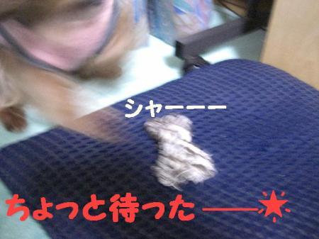 コピー ~ 2008.12.20~ 042