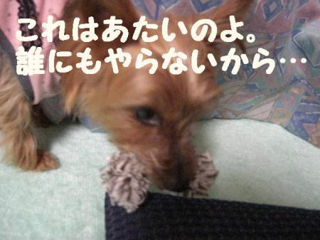 コピー ~ 2008.12.20~ 048