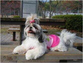 公園のベンチで(*^_^*)