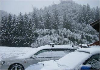 久しぶりの積雪。