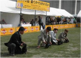 4Gのグループ入賞犬(^O^)/