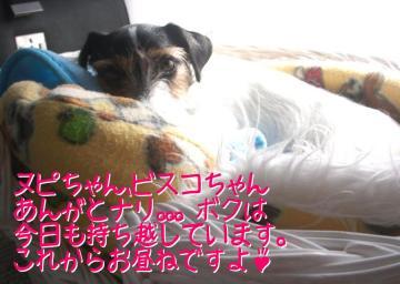 20091017019.jpg