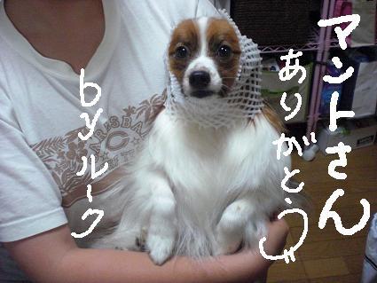 itadakimono1.jpg