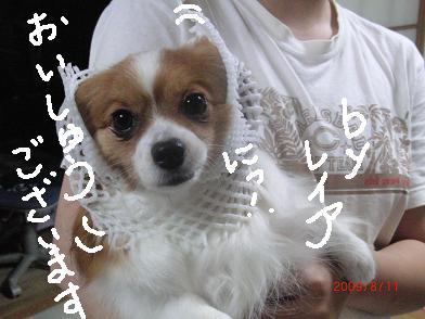 itadakimono7.jpg