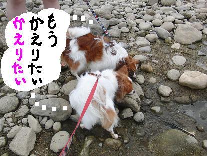 kawaasobi00.jpg