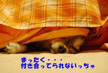 DSC_9658 ブログ