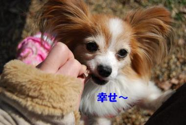 DSC_9789 ブログ