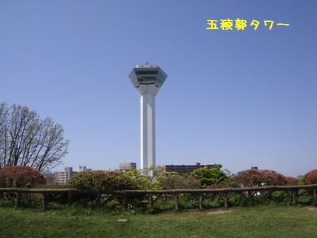 DSC71.jpg