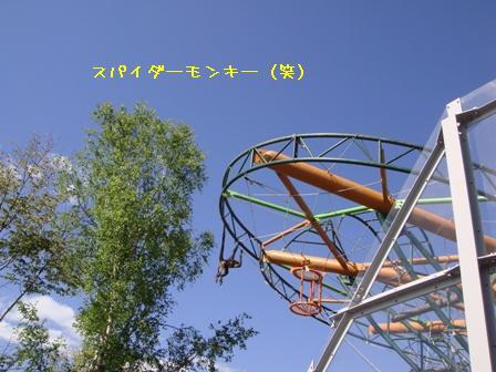 DSC8.jpg