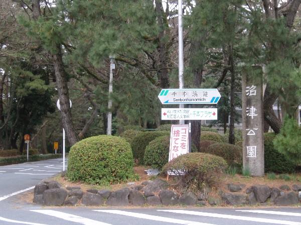 P1220015.JPG千本浜.jpg