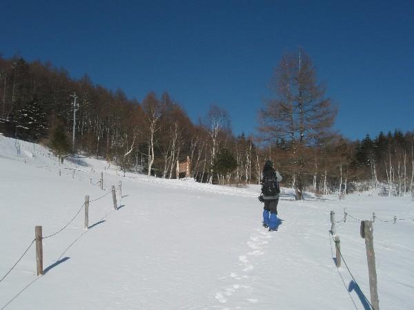 P1300038.JPG登山道.jpg