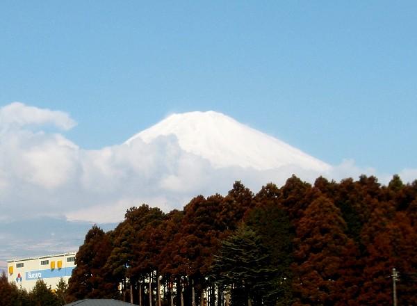 P2200009.JPG富士山2.jpg