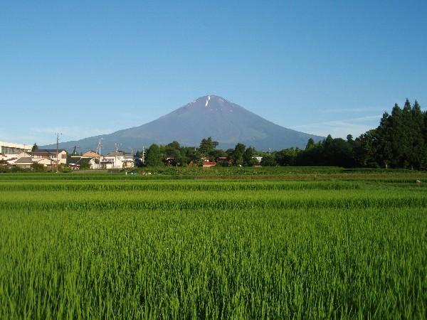 P7180001.JPG富士山.jpg