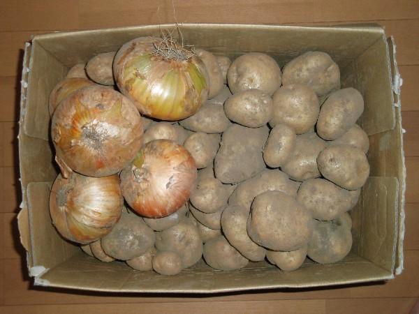 P7180016.JPG野菜2.jpg