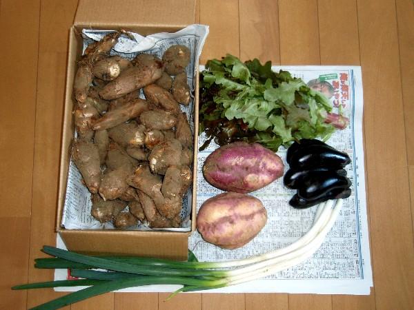 PA030013.JPG野菜.jpg