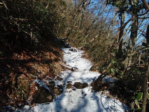 PC290006.JPG登山道.jpg
