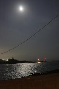 夜景_DSC0265
