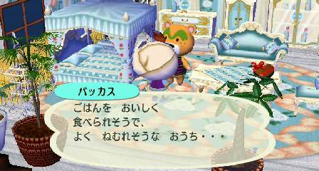 2009_2_20bakkasu5
