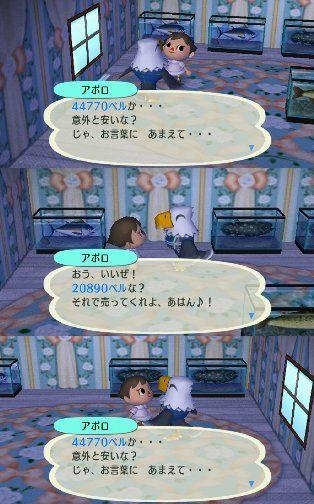 2009_2_29furimaaporo