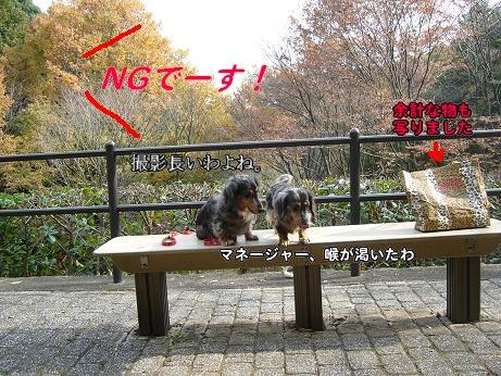 公園にて5