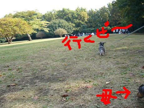 公園にて7