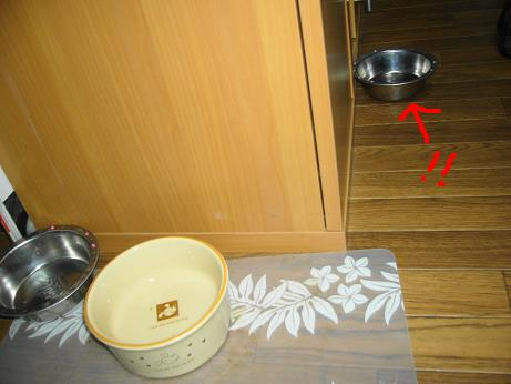 皿が・・・