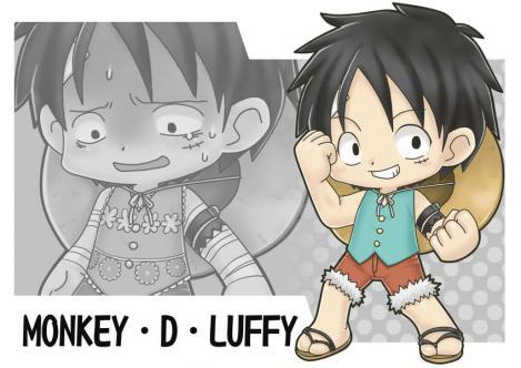 luffy2009