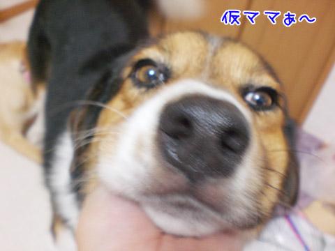 20090725-03.jpg
