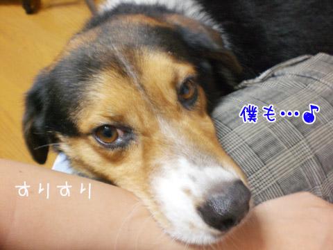 20090725-04.jpg