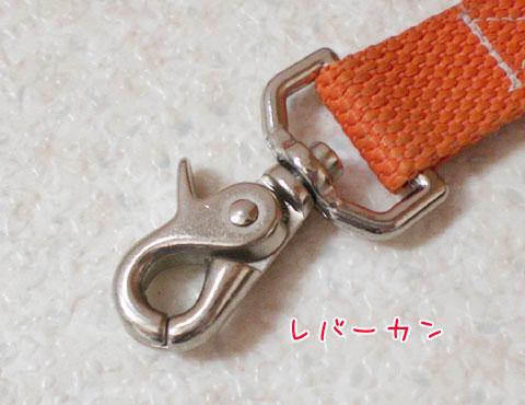 20091017-01.jpg