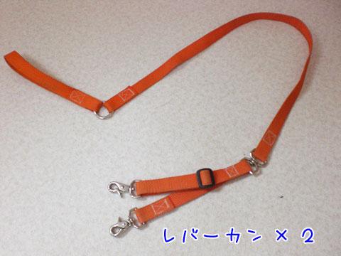 20091017-04.jpg