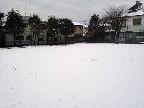 20100202-01.jpg