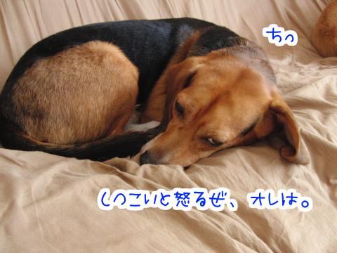 20100926-01.jpg