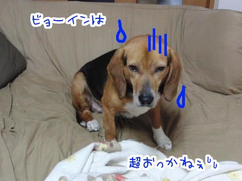 20110616-09.jpg