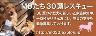 MD30_320x120.jpg