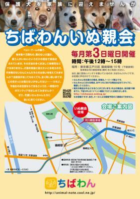 chibawan_teiki_inuoyakai_poster.jpg