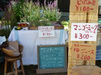 blog 2010.07.17 1